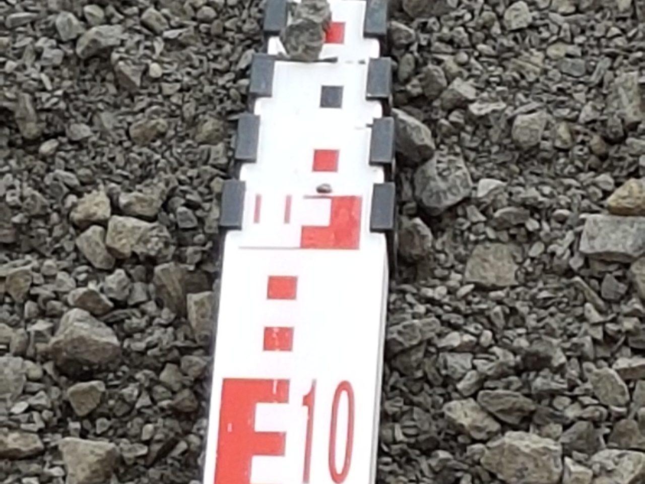 20mm FCR 6